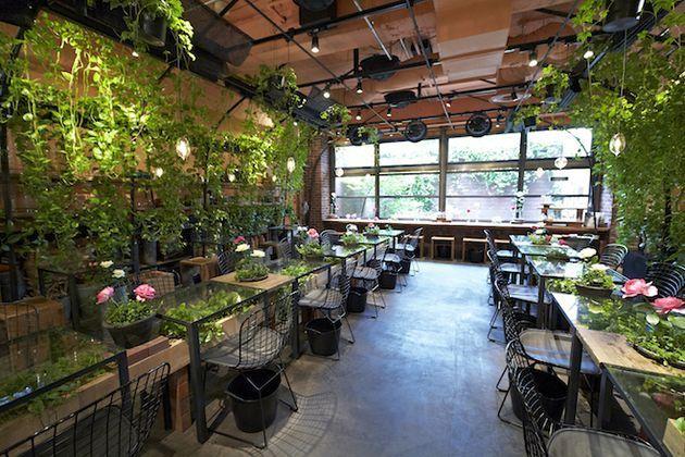 一緒に光合成しようよ!お花と緑に囲まれた東京都内の癒やしカフェ5選 | RETRIP
