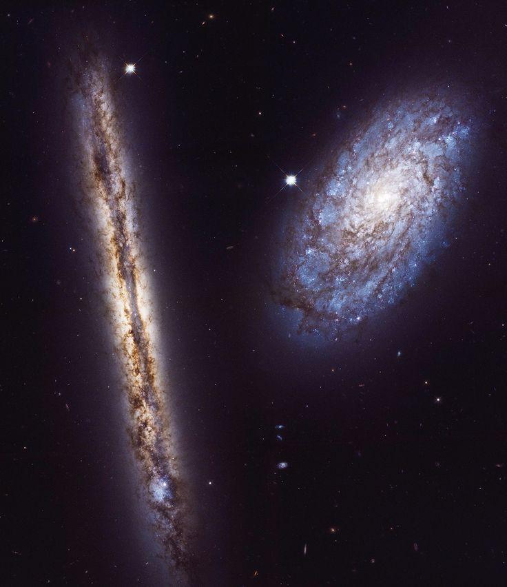 La galaxia espiral NGC 4302, quese ve de ladoa la izquierda, se encuentra a unos 55 millones de años luz de la bien cuidada constelación Coma Berenices. Forma parte del grancúmulo de galaxias de Virgoy abarca unos 87.000 años luz, algo menos que la Vía Láctea.Como la Vía Láctea, las bandas de polvo de NGC 4302 cortan el centro del plano galáctico y, desde nuestra perspectiva, oscurecen y enrojecen la luz estelar. La galaxia compañera NGC 4298, más pequeña, también es una espiral llena…