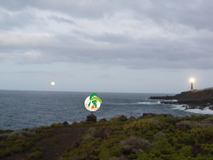 23 Best Isla De La Palma Images On Pinterest Canarian