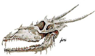Here be Dragons! Dragon Art, Dragon Pictures, Dragon Gifts, Dragons for Sale