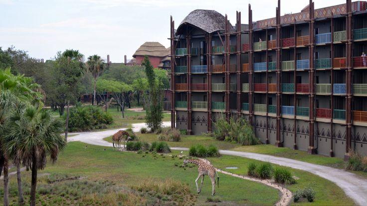 10+ Images About Walt Disney World Resort Hotels Videos On
