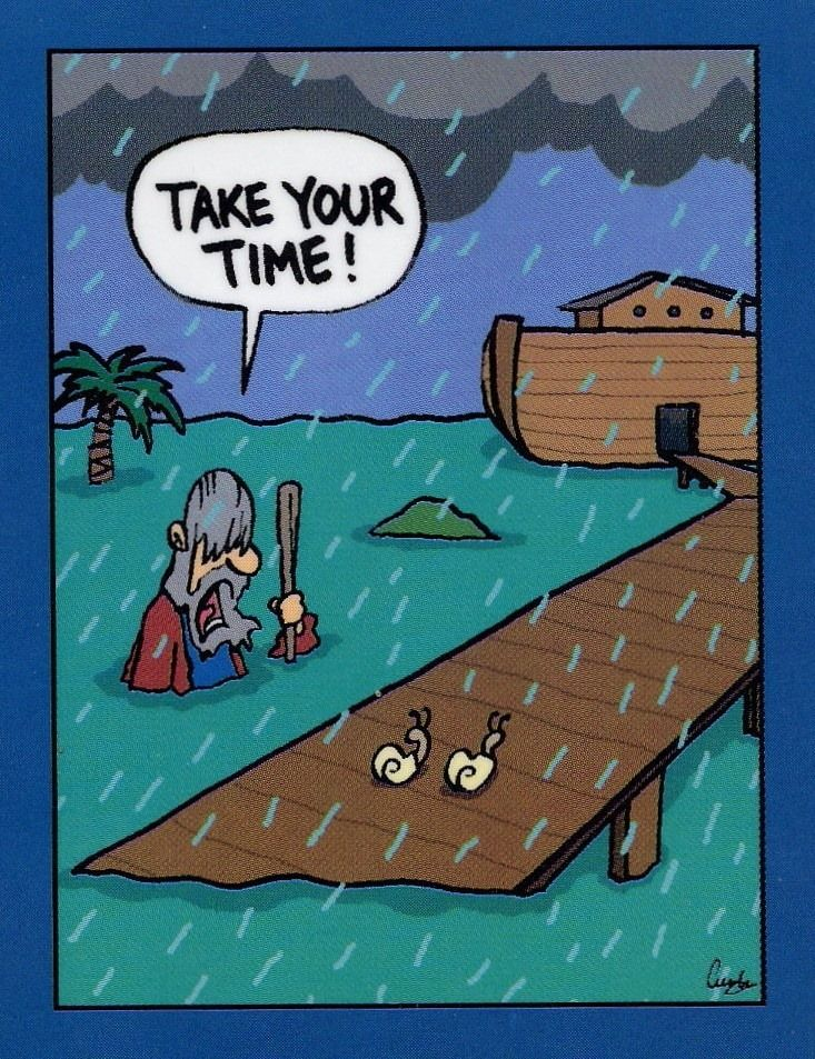 Noahthey Took No Note on Best Of Noah 39 S Ark The Flood Images