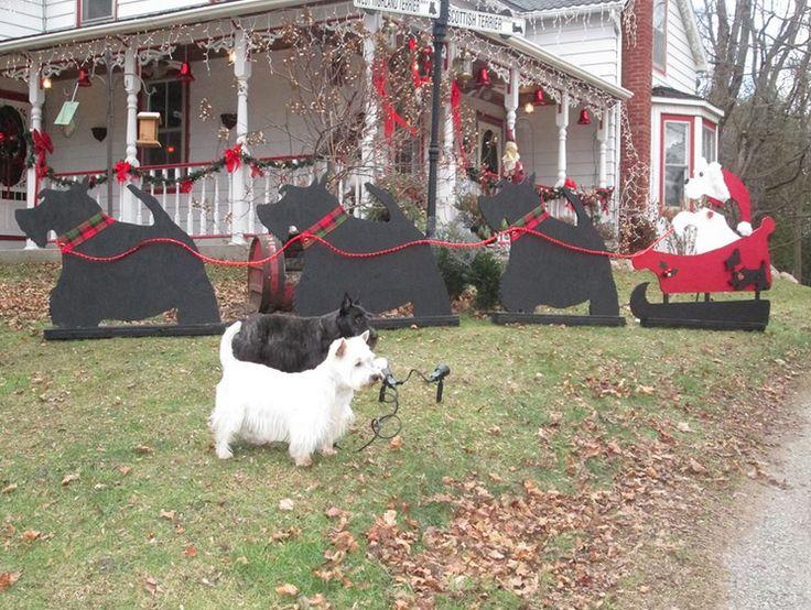 Scottish Terrier Reindeer with Santa Westie!