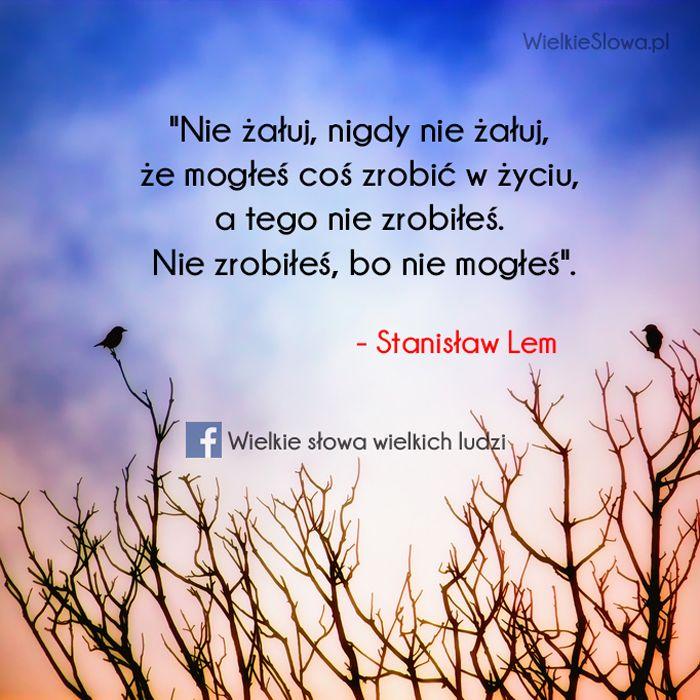 Nie żałuj, nigdy nie żałuj, że mogłeś coś zrobić w życiu... #Lem-Stanisław,  #Smutek, #Życie