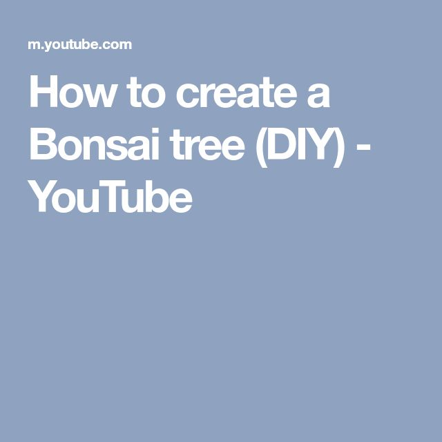 How to create a Bonsai tree (DIY) - YouTube