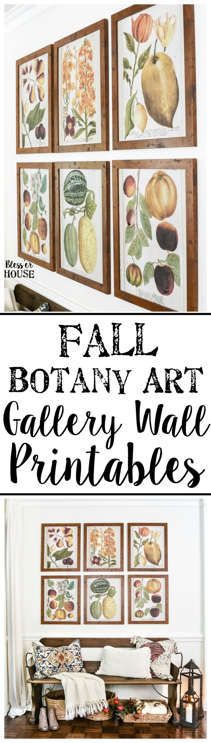 Fall Botany Art Gallery Wall Printables   blesserhouse.com - A free printable set of 6 fall botany art prints for a gallery wall, plus a bloghop with 29 autumn-inspired printables for the home.