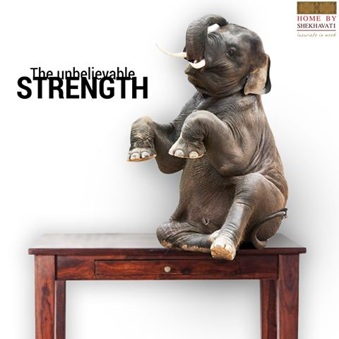 THE UNBELIEVABLE STRENGTH !  Strength is a major factor that we keep in mind while purchasing a piece of furniture. It is the base upon which the lifetime of the furniture lies.The more stronger it is the more chances of it of lasting long.  Keeping that in mind, furniture from Home By Shekhavati are of premium quality and strength giving you once in a lifetime experience.  To Shop visit - http://bit.ly/HBS_Shop
