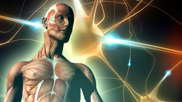 Șapte lucruri pe care corpul tău le face fără ca știința să le poată explica
