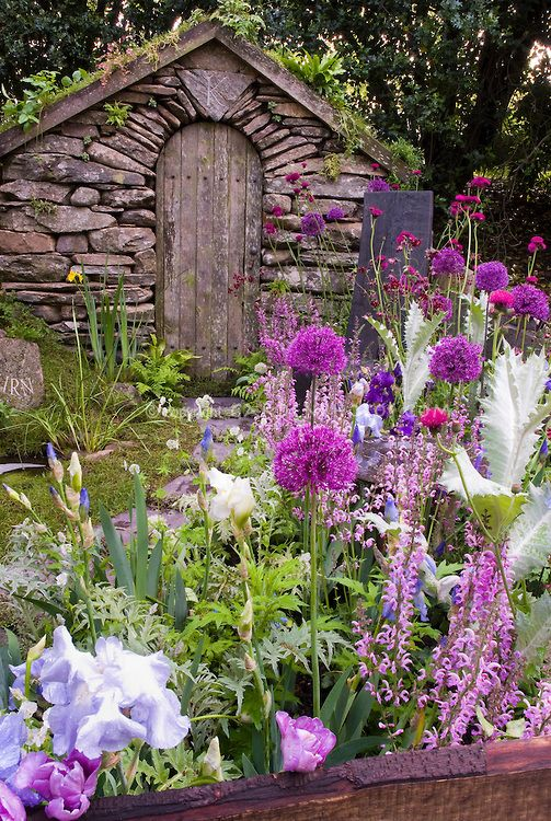 Stone garden Walk path with lush flower garden and stone shed, with lawn grass, irises, allium, in pink, lavender and blue color theme tones in late spring bloom, includes Cirsium rivulare 'Atropurpureum' composite, Salvia pratensis 'Pink Delight'