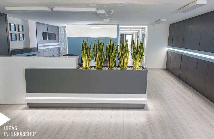 Clínica dental | Decoración de interiores en Valencia