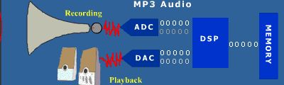 The diagram shows how a DSP is used in an MP3 audio player. During the recording phase, analog audio is input through a receiver or other source. This analog signal is then converted to a digital signal by an analog-to-digital converter and passed to the DSP.  http://www.analog.com/en/processors-dsp/products/beginners_guide_to_dsp/fca.html
