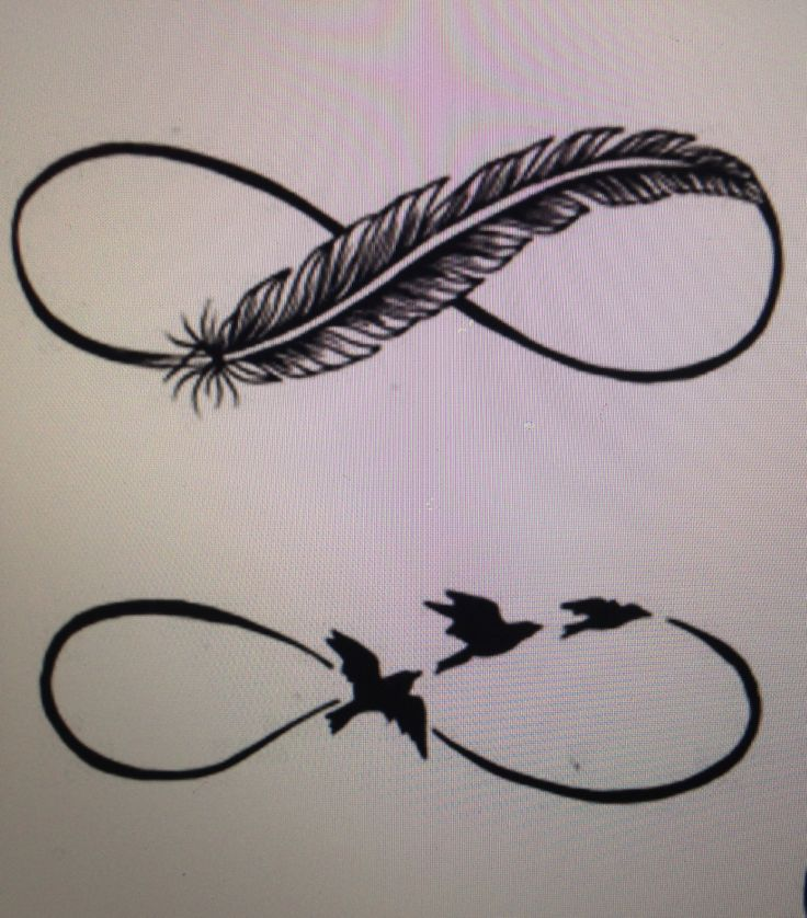 Infinity feather or birds