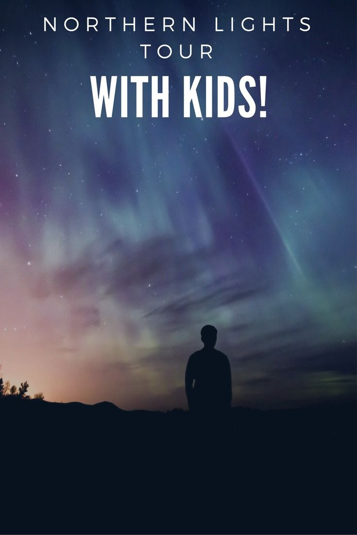Iceland guided tours | Things to do in Iceland | Traveling with kids in Iceland | Seeing the northern lights with kids | Visit Iceland | Iceland vacation | Southern Iceland |