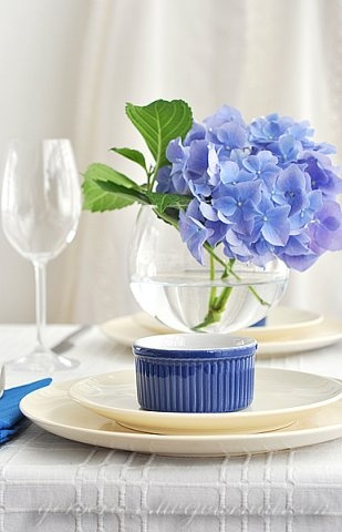 Gorgeous, single hydrangea blooms  can make such a statement