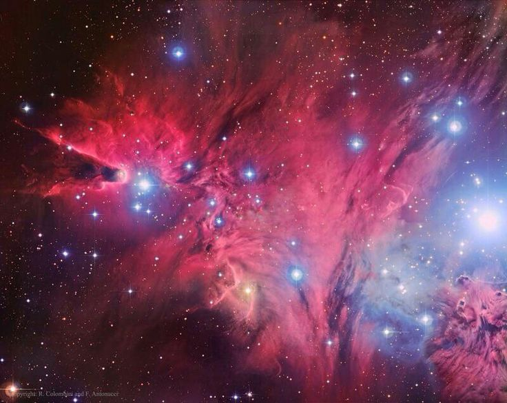 A Fox Fur, a Unicorn, and a Tree Astronomy pictures