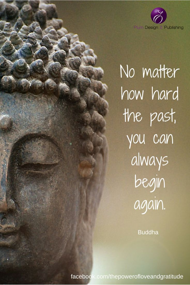 Buddhist Quotes On Love 13 Best The Power Of Love And Gratitude Images On Pinterest  Be