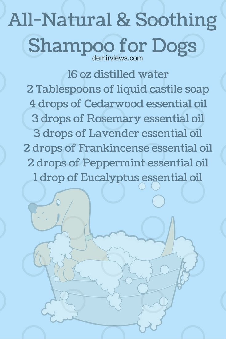 Mix up this all natural and soothing shampoo for Dogs made with essential oils. demirviews.com