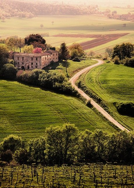 Tuscan Villa in Tuscany , Val D'Orcia , province of Siena Italy