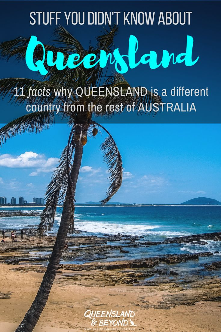 Life in Queensland is pretty cruisy but if you've spent most of your life in the southern states in Australia, then there's a lot that may puzzle you about Queensland. Here are 11 things about Queensland that are a bit whacko and that you don't observe so much when you just do a quick road trip or travel around for a few days. 🌐 Queensland & Beyond. #queensland #reflections #australia
