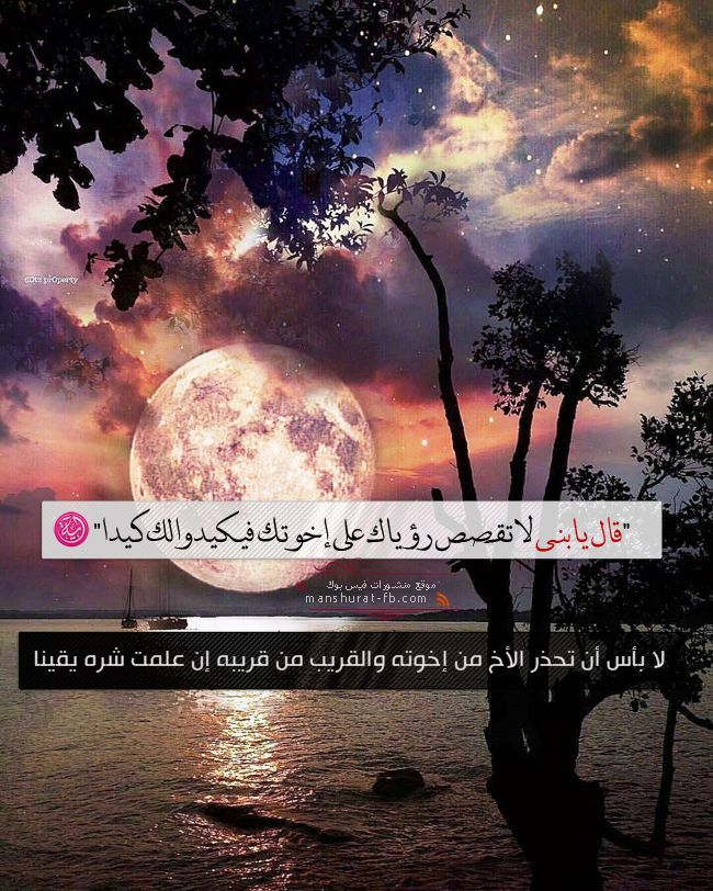 Pin By خواطر دينية اسلامية On خواطر Holy Quran Hadeeth Pure Happiness