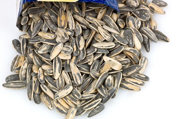 Sunflower Seeds // 20 Foods For Healthy Eyes #eyecare #eye #lookoptometry #manhattanbeach #health #nutrition