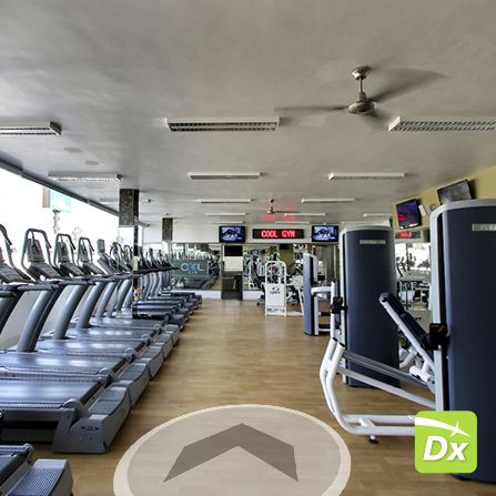 Cool Gym Business View Google Datalogyx