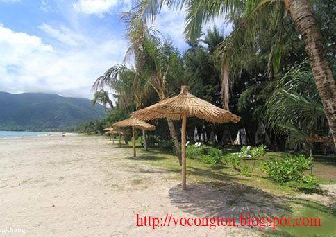 Côn Đảo là một quần đảo ở ngoài khơi bờ biển Nam Bộ  cùa Việt Nam và cũng là Huyện trực thuộc Tỉnh Bà Rịa - Vũng Tàu. Côn Đảo hay Côn Sơn cũng hay dùng cho tên của hòn đảo lớn nhất trong quần đảo này (Côn Đảo gồm có 16 hòn đảo lớn nhỏ). Lịch sử Việt Nam trước thế kỷ 20 thường gọi đảo Côn Sơn là đảo Côn Lôn hoặc Côn Nôn.  https://vocongton.wordpress.com/kham-pha-con-dao/