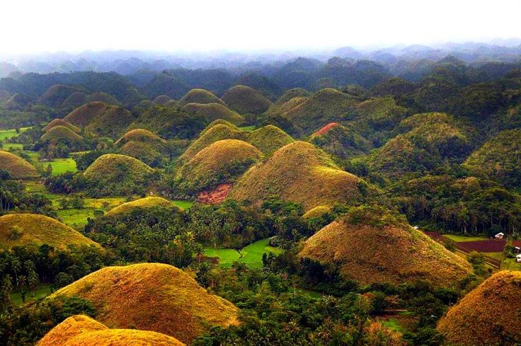 Outstanding The Chocolate Hills In Bohol Philippines Bohol Travel Package Tours with Chocolate Hill In Bohol Manila | Goventures.org