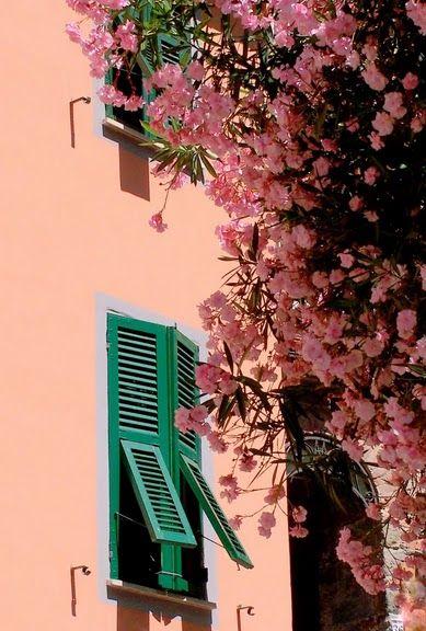 pink wall, Provence