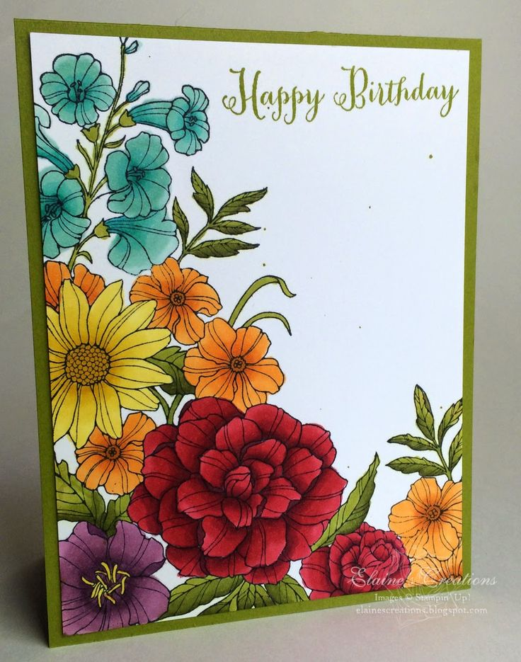 Stampin' Up! ... handmade card from Elaine's Creations ... Corner Garden background stamp ... gorgeous Blendies colors ...  deep and bold look with subtle shading adding great depth ... beautiful!
