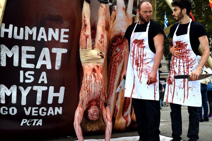 world-vegan-day-demo-1