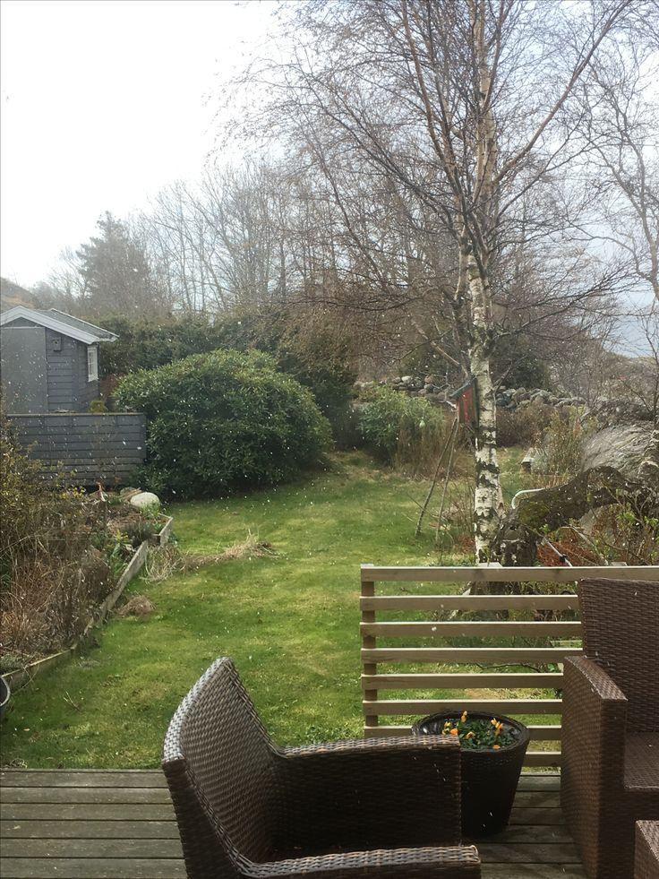 Tidlig vår i hagen i april