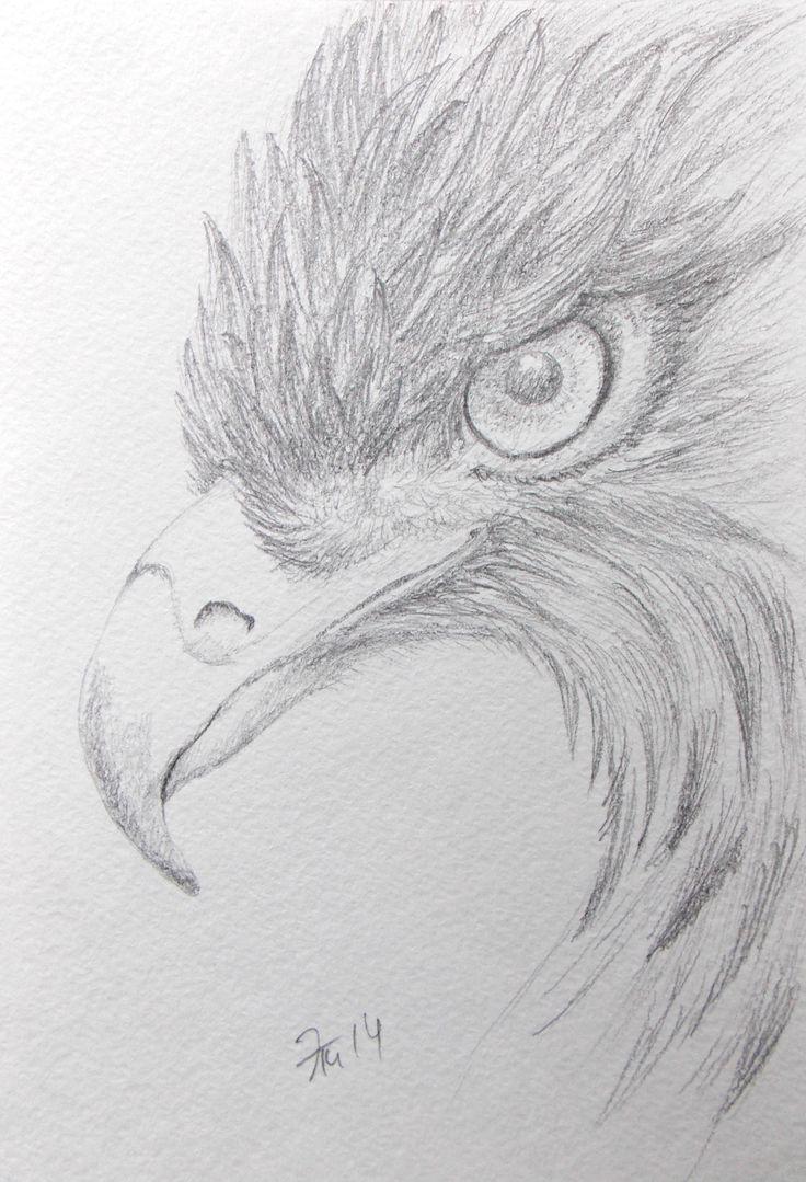Elzati (Ольга Удовенко) - птица. карандаш