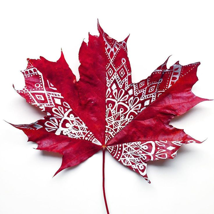 jaqulinesplatsVarför är detta så mycket roligare än att plugga? ✨ #pysselutmaningoktober #doodling #panduropyssel ---------------------------------------------------- Doodle on leaf ✨