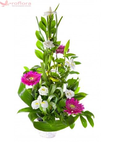 Primavara lui – Aranjament din crizanteme, irisi si eustoma