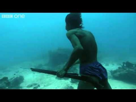 Underwater Hunter Goes Deep Sea Fishing Without Air! - Just with one breath, he goes 20m underwater, for 2 and a half minutes, to catch a fish