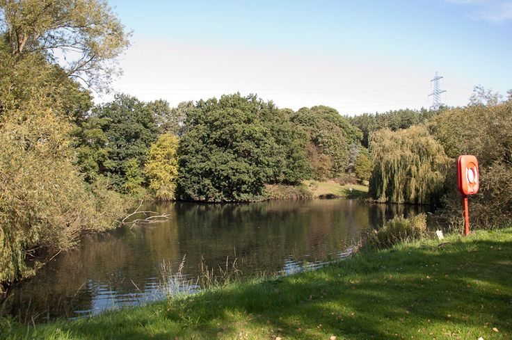 Sherwood Forest Holiday Park in Nottinghamshire, Nottinghamshire