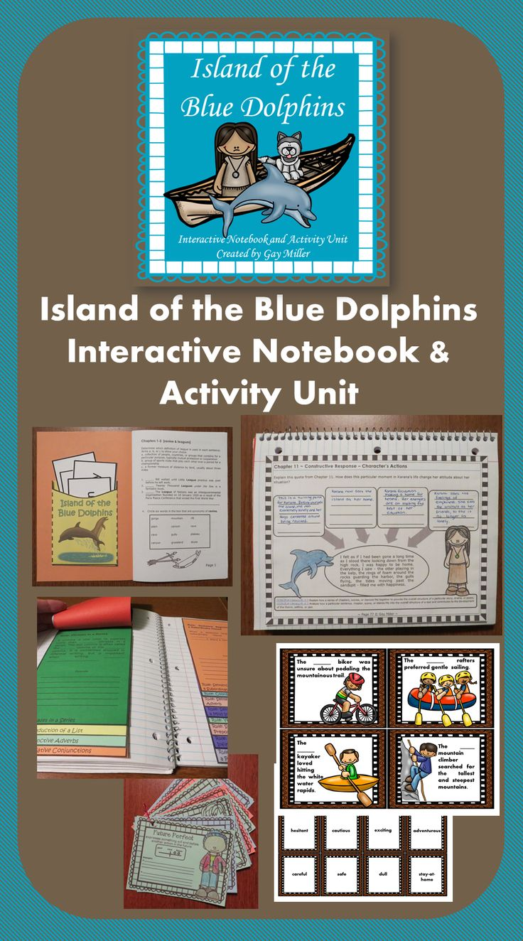 Uncategorized Island Of The Blue Dolphins Worksheets 43 best island of the blue dolphin images on pinterest dolphins dolphins