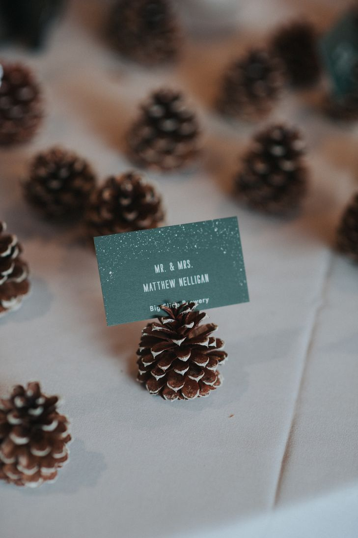 table card holder for weddings Big pine cone decoration citrus card holder table number holder