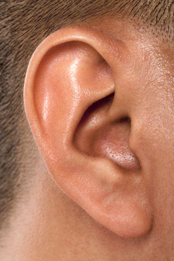 практически фото уха человека многим охото