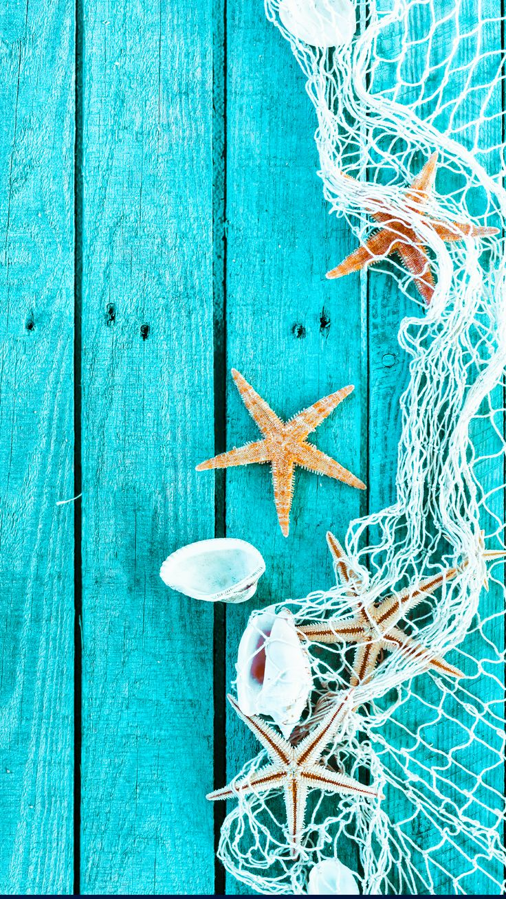 ↑↑TAP AND GET THE FREE APP! Art Creative Sea Star Blue Wood Shell HD iPhone 6 Plus Wallpaper