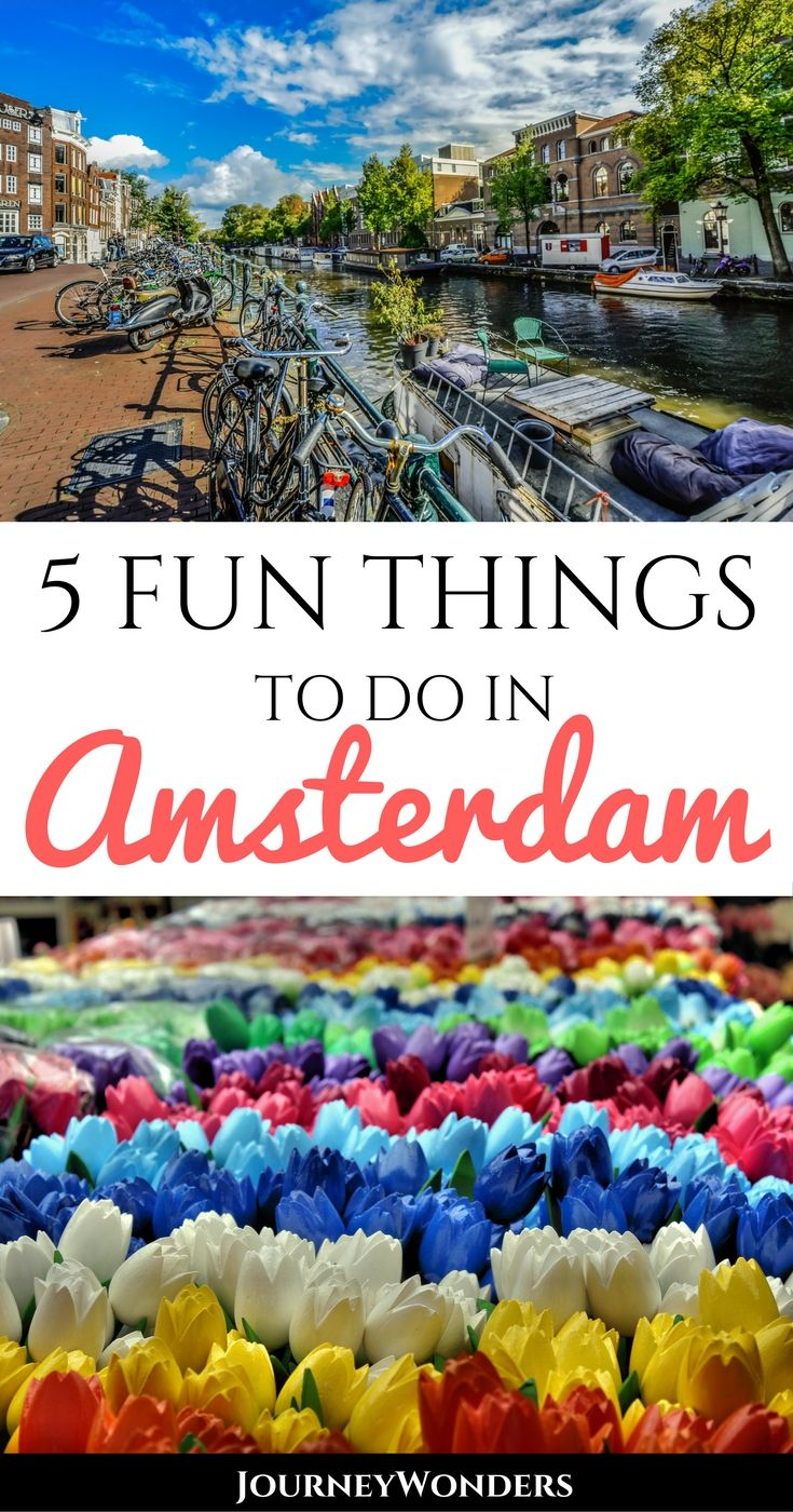 """Amsterdam is famous for its weed selling """"coffee shops"""" and its red light district, but there are so many more things to do than that. Alternative ideas for traveling the capital of the Netherlands via @journeywonders"""