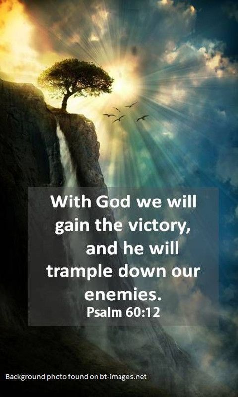 Through God we will do valiantly,For it is He who shall tread down our enemies. Psalm 60:12 (NKJV)