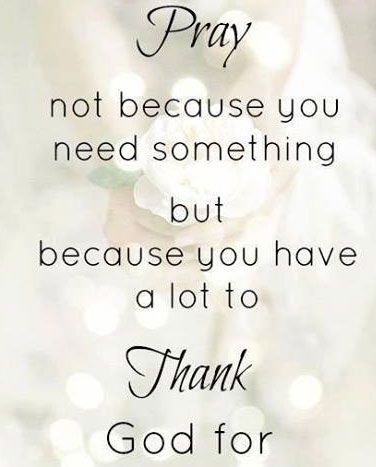 16 Delightful Quotes That Will Make You Smile Quotes Pinterest