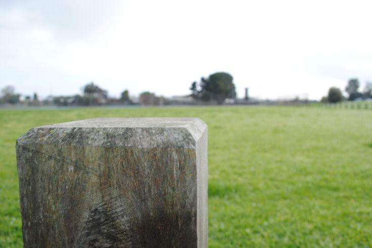 Corner Photo