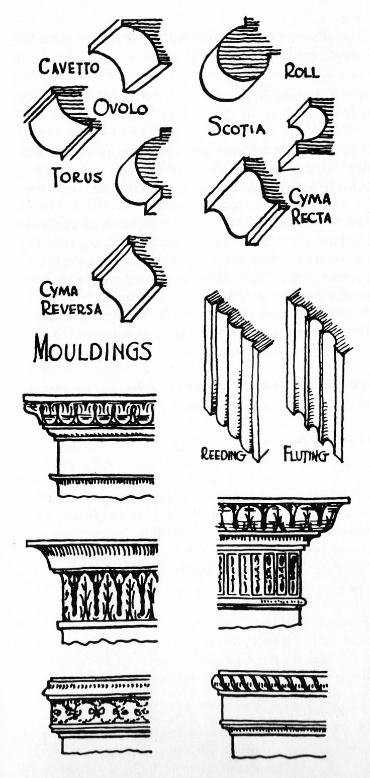 Chair antique queen anne chair the buzz on antiques antique chairs 101 - Diagram Of Moldings Class Projectsantique Furniture Moldingssketchinganatomyknowledgevillahomemadeplaster