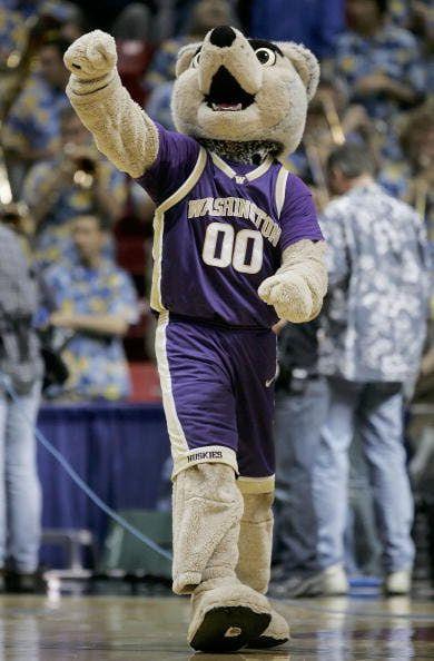 Washington Huskies Basketball | Washington Husky