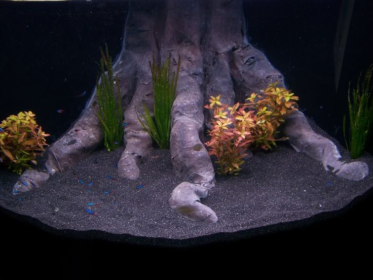 Aquariums/Ponds a collection of ideas to try about Other - halloween fish tank decorations