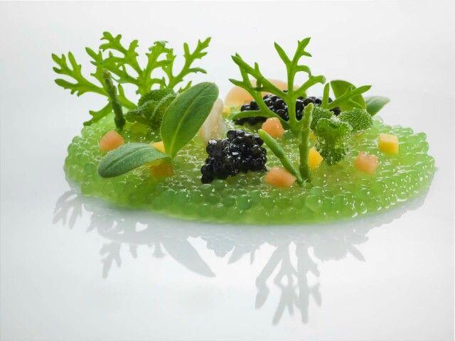 """Water Garden"" by Chef Heinz Beck. The ""garden"" is a carpaccio of prawns…"