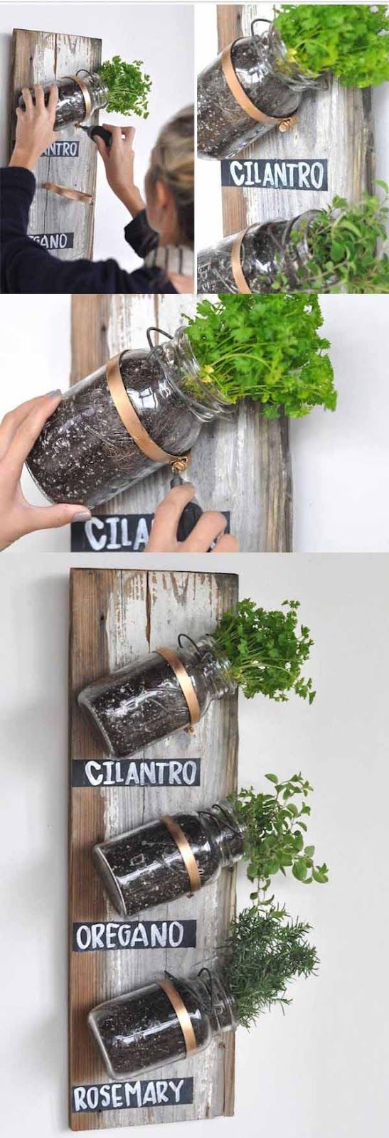 Live in an apartment? You can have an herb garden, too. Use mason jars and a wooden board on a spare kitchen wall.